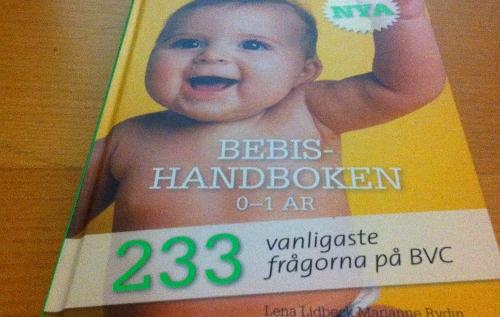 bebis-handboken